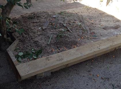 Tree Mulching Services